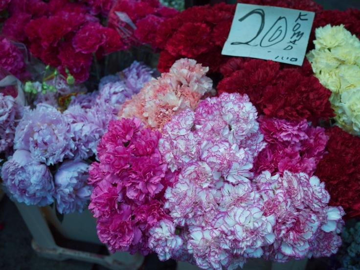 flowers-in-kalenic